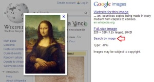 Image search info bar