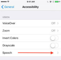 This is a screenshot of where Speech is located on iOS devices.