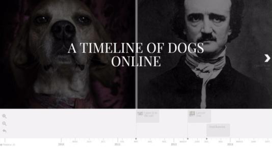 dog-timeline-title-page